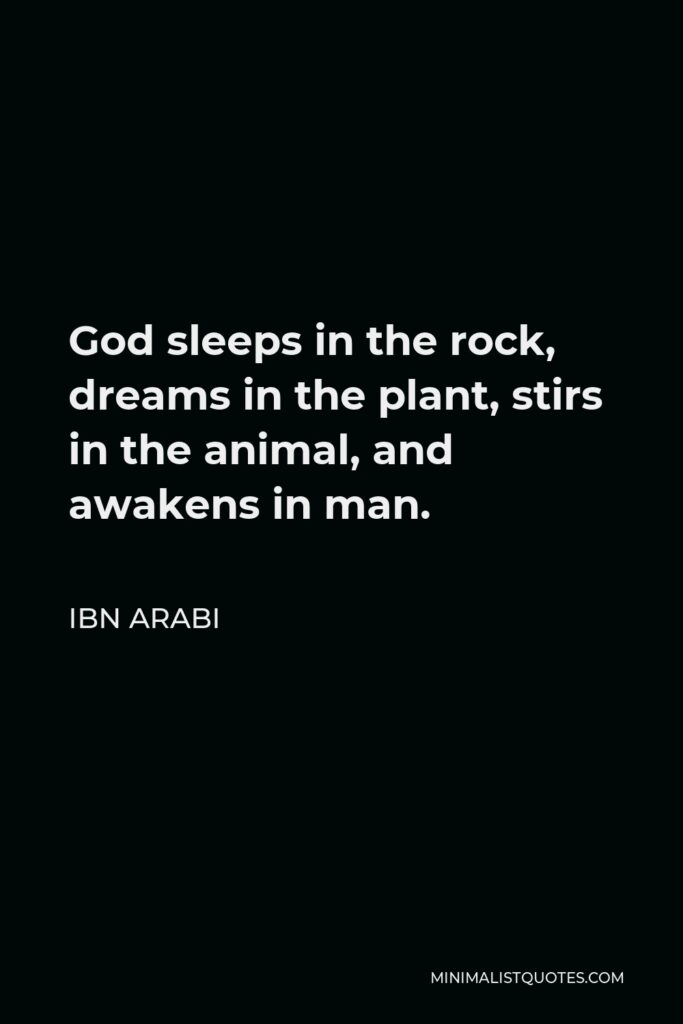 Ibn Arabi Quote - God sleeps in the rock, dreams in the plant, stirs in the animal, and awakens in man.