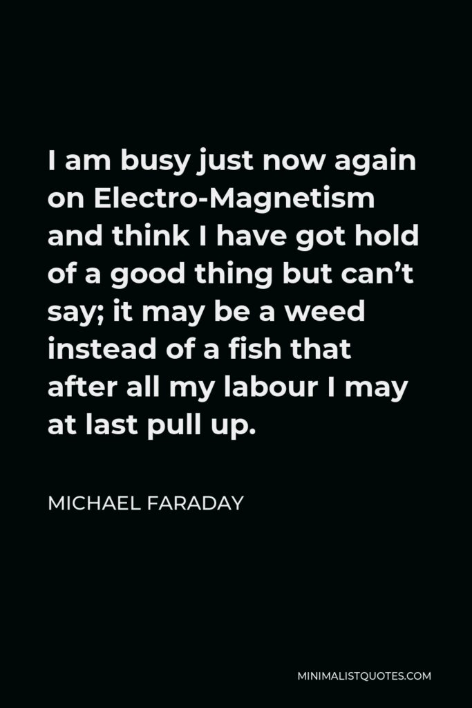 Michael Faraday Quote - I am busy just now again on Electro-Magnetism and think I have got hold of a good thing but can't say; it may be a weed instead of a fish that after all my labour I may at last pull up.
