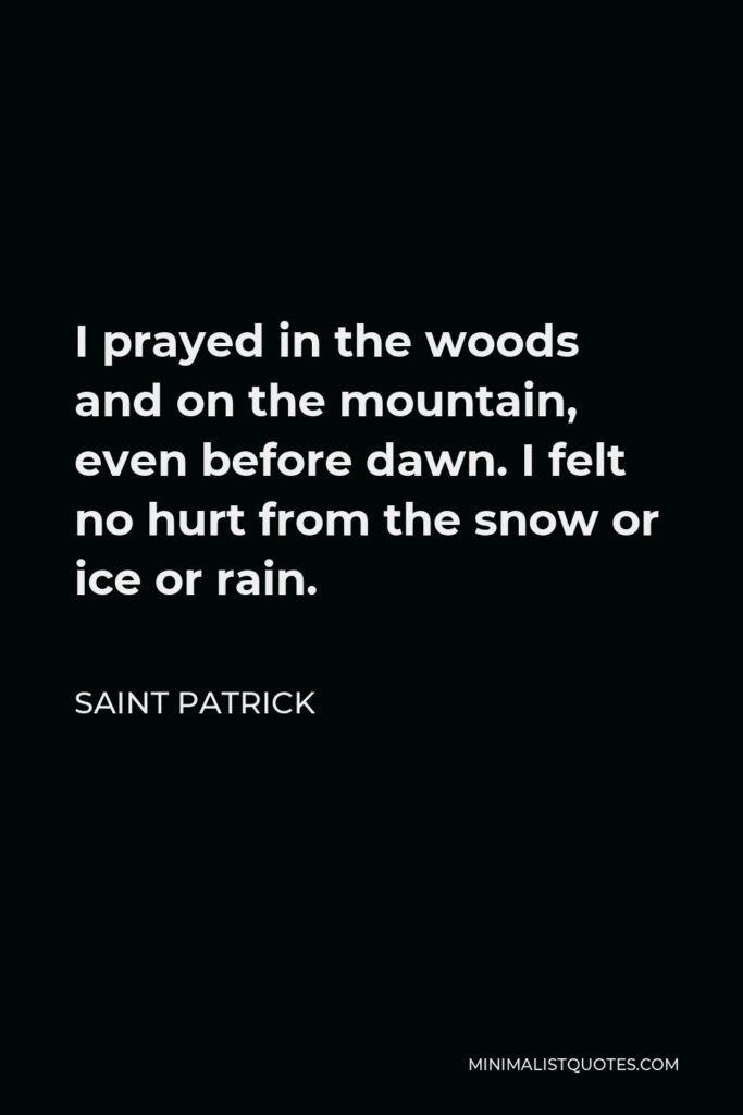 Saint Patrick Quote - I prayed in the woods and on the mountain, even before dawn. I felt no hurt from the snow or ice or rain.