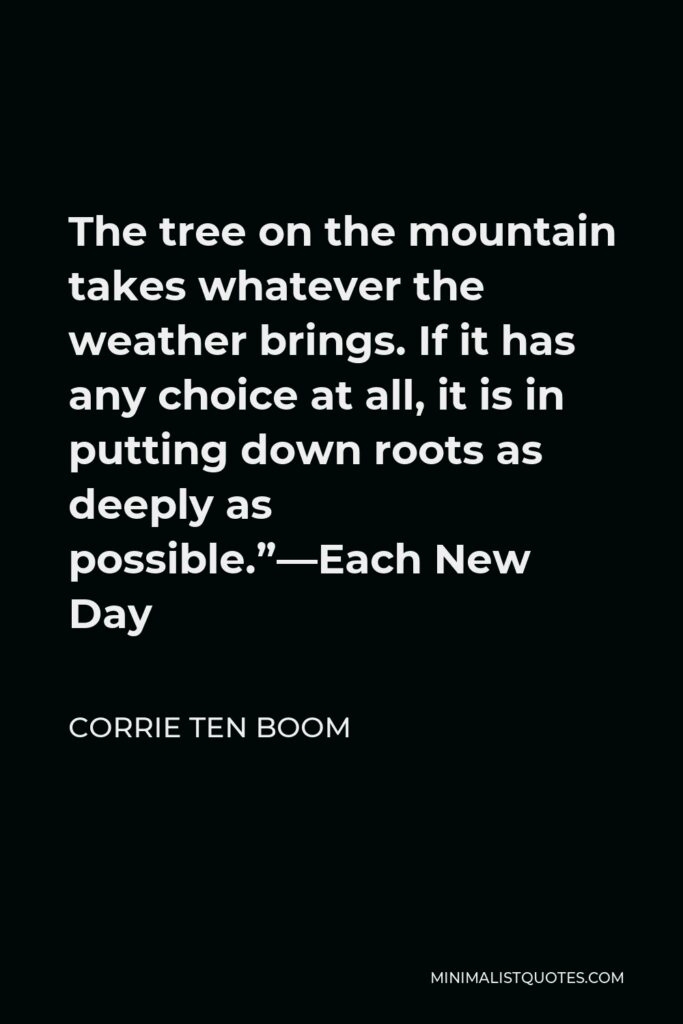 """Corrie ten Boom Quote - The tree on the mountain takes whatever the weather brings. If it has any choice at all, it is in putting down roots as deeply as possible.""""—Each New Day"""