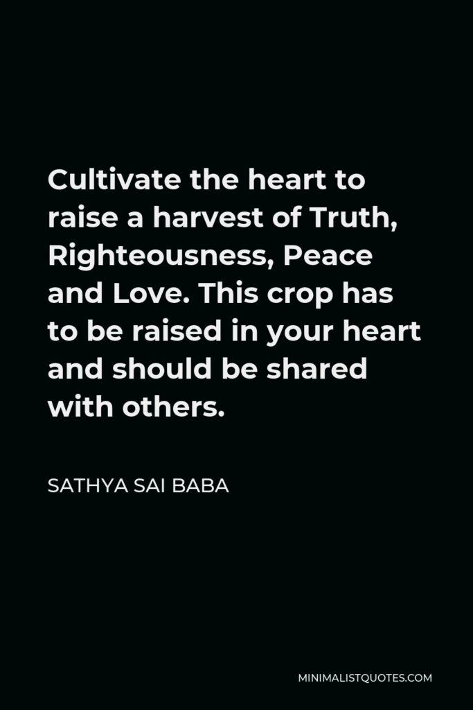 Sathya Sai Baba Quote - Cultivate the heart to raise a harvest of Truth, Righteousness, Peace and Love. This crop has to be raised in your heart and should be shared with others.