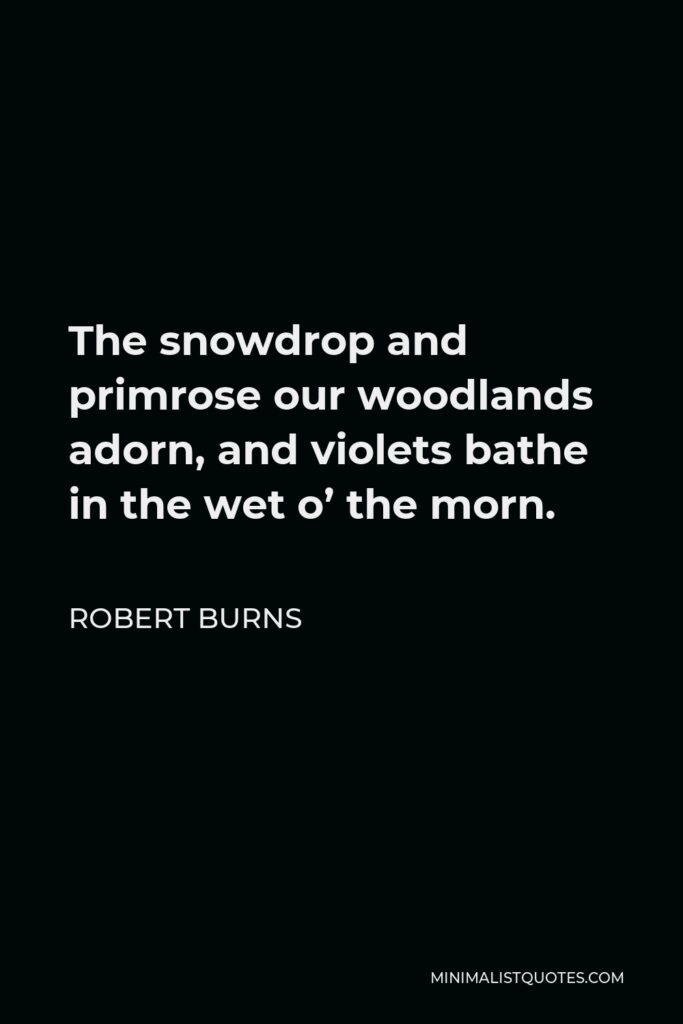 Robert Burns Quote - The snowdrop and primrose our woodlands adorn, and violets bathe in the wet o' the morn.