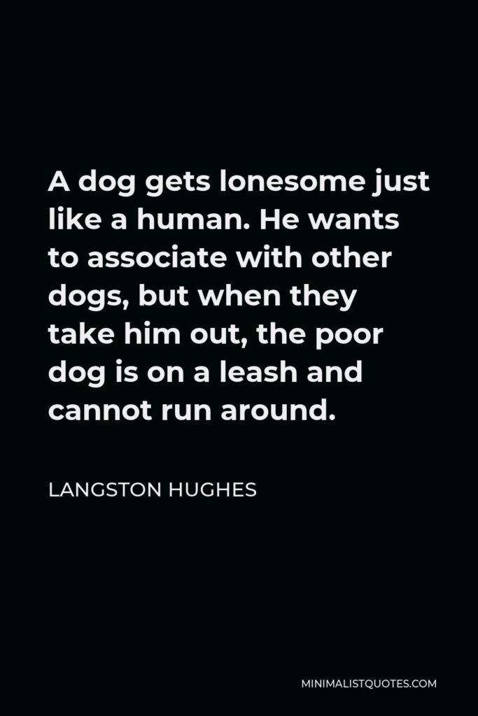 Langston Hughes Quote - A dog gets lonesome just like a human. He wants to associate with other dogs, but when they take him out, the poor dog is on a leash and cannot run around.