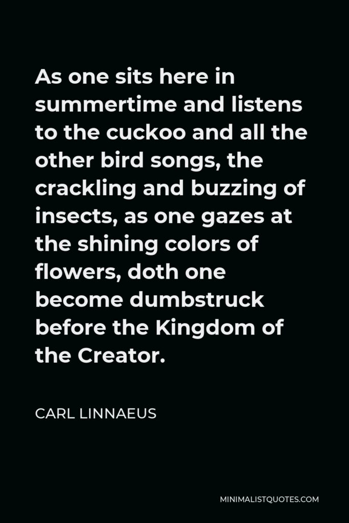 Carl Linnaeus Quote - As one sits here in summertime and listens to the cuckoo and all the other bird songs, the crackling and buzzing of insects, as one gazes at the shining colors of flowers, doth one become dumbstruck before the Kingdom of the Creator.