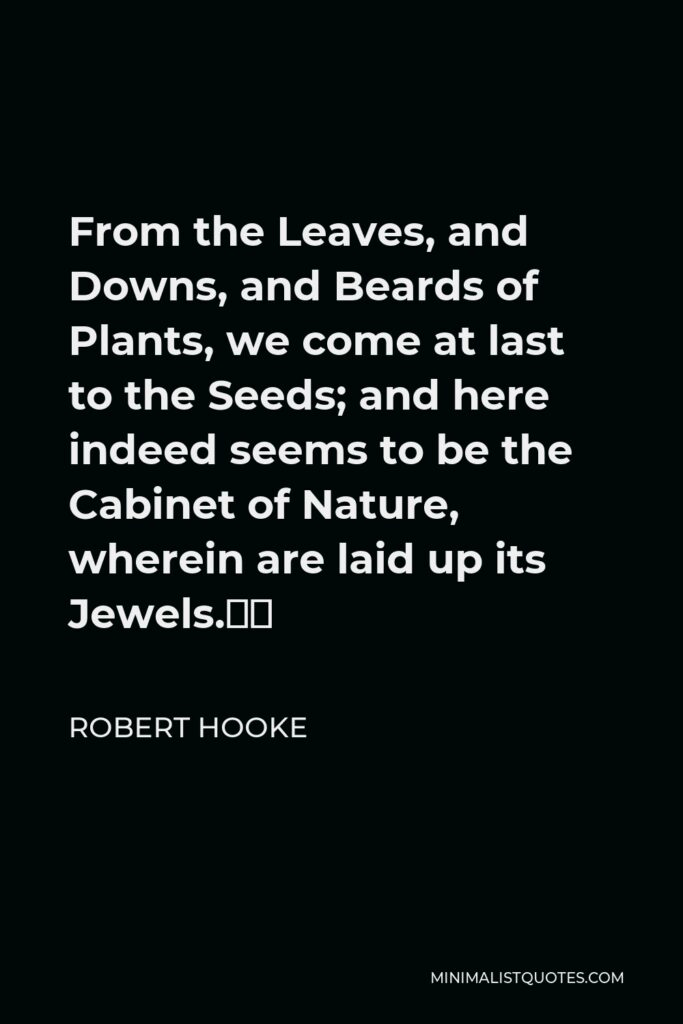 """Robert Hooke Quote - From the Leaves, and Downs, and Beards of Plants, we come at last to the Seeds; and here indeed seems to be the Cabinet of Nature, wherein are laid up its Jewels."""""""