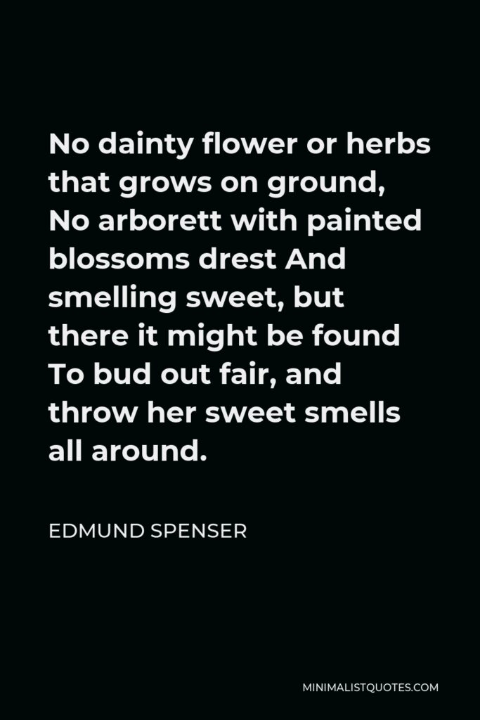Edmund Spenser Quote - No dainty flower or herbs that grows on ground, No arborett with painted blossoms drest And smelling sweet, but there it might be found To bud out fair, and throw her sweet smells all around.