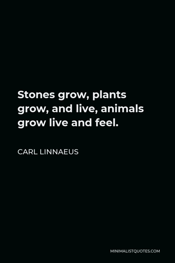 Carl Linnaeus Quote - Stones grow, plants grow, and live, animals grow live and feel.