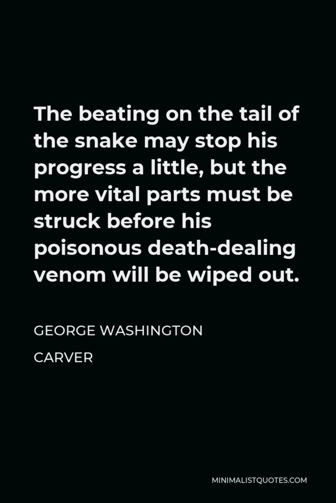 George Washington Carver Quote - The beating on the tail of the snake may stop his progress a little, but the more vital parts must be struck before his poisonous death-dealing venom will be wiped out.